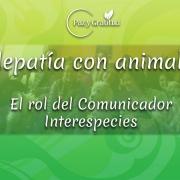 qué es la telepatía con animales